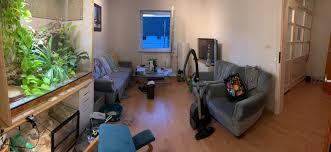 wie richte ich mein wohnzimmer schön ein wohnung design