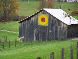 Barn W/Sunflower Quilt | KY Fall October '06 Heading To The … | Flickr Zenfolio J Blackmon Photography Check Out These Quilt Barns Another On Barn In Kentucky Quilts Barns Pinterest 422 Best Barn Images Painted Quilts 801 I Love Hickman County Quilt Trail Weblog Beauty Celebration Arts Accuquilt Tour Monroe Tourism Ky All Ive Got Is A Photograph From Square One Owensboro Living Blazing The Tahoe Quarterly And American Memories 954 With Art