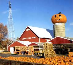 Celina Pumpkin Patch Directions by South Barrington Illinois Real Estate And South Barrington
