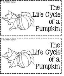 Printable Pumpkin Books For Preschoolers by Free Life Cycle Of A Pumpkin Booklet From Pioneer Teacher On