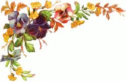 Pansy clipart border 5