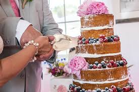 Berry Cake At Dimeo Farms Wedding