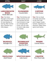 Patios Little River Sc Entertainment Calendar by Georgia 2016 Fishing Calendar Game U0026 Fish