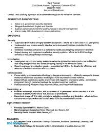Correctional Officer Resume Examples Armed Security Guard Sample