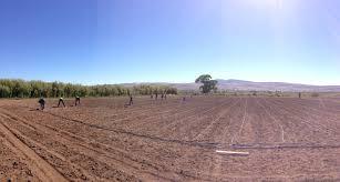 Pumpkin Patch Reno Nv by Farm Update Part 1 Andelin Family Farm