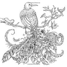 Animorphia Coloring Book By Kerby Rosanes