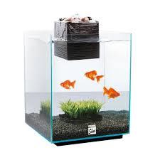 aquariums animal valley