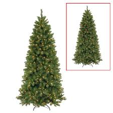National Tree Company 75 Ft Lehigh Valley Slim Pine Artificial Christmas With Dual Color