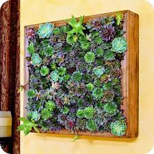 Wall Art Extraordinary Succulent Living With Room Set Artificial Marvellous Design