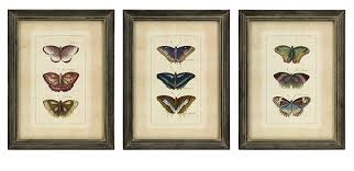 Amazon IMAX 27304 3 Butterfly Collection Wall Art Set Of Home Kitchen