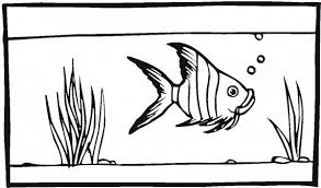 Fish Tank For Angel Coloring Page