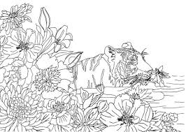 Adults Nature Coloring Page Pages