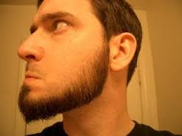 Thin Chin Curtain Beard by Amazing Images Blog The Quest For Every Beard Type
