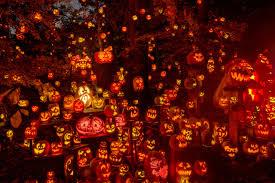 Roger Williams Pumpkin by Jack O Lantern Spectacular Roger Williams Park Zoojack O Lantern