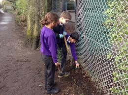 Gardening – Tithe Barn Primary School Daniel Procter Noodlesandcoke Twitter Tithe Barn Primary School Sk4 3ng Stockport 0161 432 4941 Commercial Garden Designs Dreamscape Gardens Landscaping And Visit Bernard Young Poet Year 5 Lucas Garden Set For July Opening South Manchester News Mr Shaw Page 3 Opened In Memory Of Schoolboy Carols To Kensani 2016 Rotary Club Lamplighter School