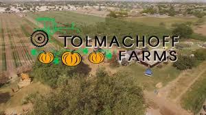 Pumpkin Patch Farms In Phoenix Az by Pumpkin Days U0026 Corn Maze Tolmachoff Farm Youtube