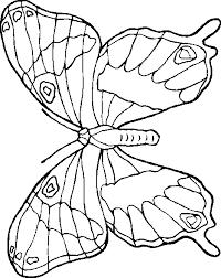 dessin a imprimer coloriage de papillon à imprimer