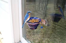 Bathtub Mat Without Suction Cups by Bird Feeders Com Desert Steel Magnolia Single Decorative Bird