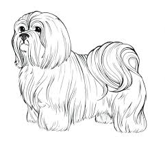 Coloring Pages Wonder Pets Printable Jewelpet Dog Breed Palace Seashell Pet
