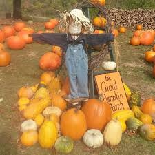 Columbus Ohio Pumpkin Patches by Stoney Creek Farm Pumpkin Patch And Hayride Ohio Haunted Houses