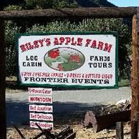 Oak Glen Pumpkin Patch Yucaipa by Oak Glen Ranches U0026 Orchards