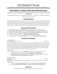 Curriculum Vitae Samples Sales Marketing Resume For It Sample