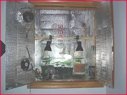 kit chambre de culture cannabis chambre awesome kit chambre de culture complet hi res wallpaper