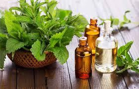 20 Effective Home Reme s To Treat Pneumonia