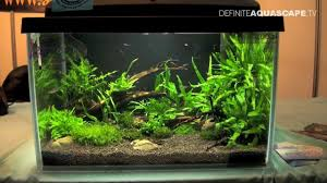 Aquascaping - Aquarium Ideas From ZooBotanica 2013, Pt.3 - YouTube Home Accsories Astonishing Aquascape Designs With Aquarium Minimalist Aquascaping Archive Page 4 Reef Central Online Aquatic Eden Blog Any Aquascape Ideas For My New 55g 2reef Saltwater And A Moss Experiment Design Timelapse Youtube Gallery Tropical Fish And Appartment Marine Ideas Luxury 31 Upgraded 10g To A 20g Last Night Aquariums Best 25 On Pinterest Cuisine Top About Gallon Tank On Goldfish 160 Best Fish Tank Images Tanks Fishing