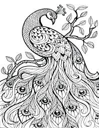 Hard Color By Number Coloring Pages Advanced Cat For Teenagers Difficult Free Printable