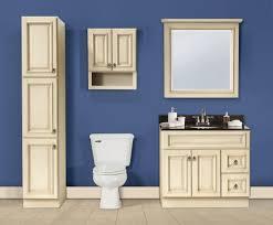 Antique Bathroom Vanity Double Sink by Bathroom Cabinets Bathroom Vanities Double Rta Bathroom Cabinets