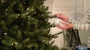 Frontgate Christmas Tree Storage by Grand Fir Christmas Tree With Wheeled Stand Grandin Road