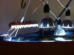 eclairage led pour aquarium eau de mer leds le bac de wismie