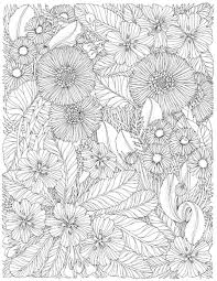 The Flower Year A Coloring Book