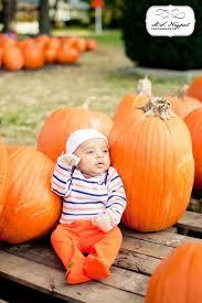 Pumpkin Patch Toledo Ohio by 14 Best Pumpkin Patch Images On Pinterest Pumpkin Patches