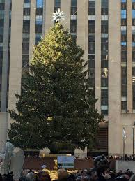 Rockefeller Plaza Christmas Tree 2014 by Trees Of New York Christmas Holiday 2015 Oh The Places We See