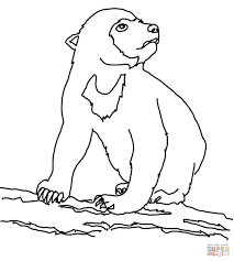 Click The Sun Bear Cub Coloring Pages To View Printable