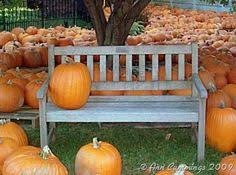 The Colony Tx Pumpkin Patch by Pumpkin Patch Cake For Fall Dessert Or Thanksgiving Dessert