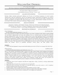 Executive Resume Templates Unique 1 Page Template Of New Nice
