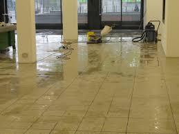Terrazzo Floor Cleaning Tips by Terrazzo Floor South Essex Tile Doctor