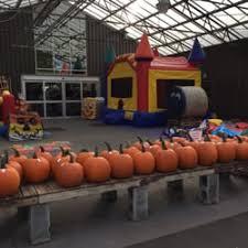 Apple Pumpkin Picking Syracuse Ny by Chuck Hafners Farmers U0027 Market U0026 Garden Center 26 Photos U0026 12