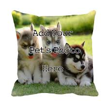 Oversized Throw Pillows Canada by 100 Throw Cushions Canada Best 25 White Throw Pillows Ideas