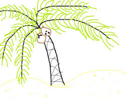 how to draw a palm tree easy