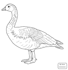 Coloring Pages Canada Wild Goose Birds Gooses