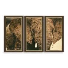 Elephant Triptych 3 Piece Framed Art