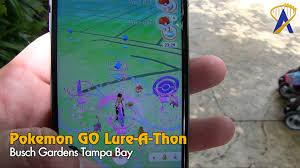 Pokemon GO Theme Park Lure A Thon at Busch Gardens Tampa