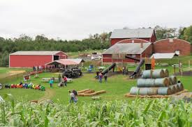 Kingsway Pumpkin Farm Hours by Northeast Ohio Pumpkin Patches Corn Mazes U0026 Fall Festivals