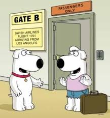 Family Guy Halloween On Spooner Street Youtube by 418 Best Family Guy Images On Pinterest Cartoons Drawings And Books