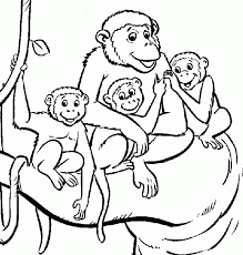 Medium Size Of Coloring Pagesmonkey Sheets Pages Monkey Vervet Color 2