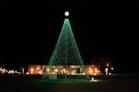 Photo Cueros Christmas In The Park Flagpole Tree